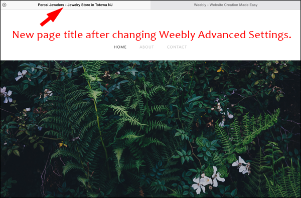 How to Edit Page Titles and Meta Descriptions in Weebly 1337-new-page-title-9