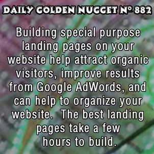Using a Unique Landing Page for AdWords Targeting 209-daily-golden-nugget-882