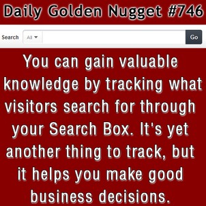 Tracking Your Website Search Box 3424-daily-golden-nugget-746
