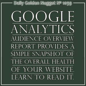 Google Analytics: Understanding the Audience Overview Report 3564-daily-golden-nugget-1059