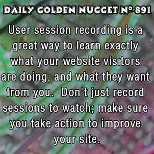 Advanced Ways to Track and Improve Your Website Sales 5155-daily-golden-nugget-891