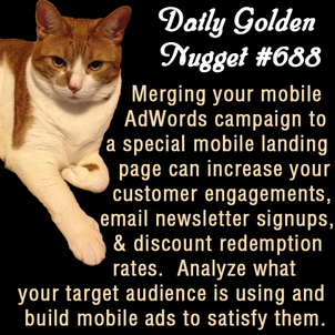 Learning Internet Marketing From a Cat 539-daily-golden-nugget-688