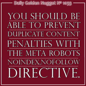 Basic SEO: Meta Robots Tag 9213-daily-golden-nugget-1033