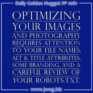 Optimizing Images for Google Image Search in 2014 - Important Image SEO Steps daily-golden-nugget-1081-61